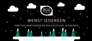 kerst christmas and new year banner boa interior